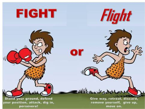 Fight Or Flight.jpg